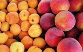 fruta de hueso