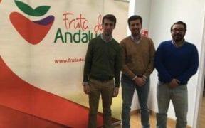 Fruta de Andalucía