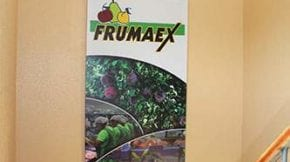Frumaex