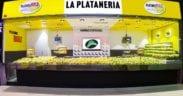 Platanería