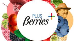 Plus Berries